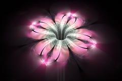 Abstrakt glödande färgrik blomma på svart bakgrund Arkivbild