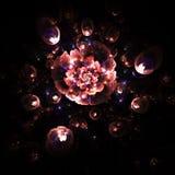 Abstrakt glödande färgrik rosblomma på svart bakgrund Royaltyfri Fotografi