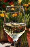 abstrakt glass bildwine Royaltyfri Foto