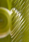 abstrakt glass green Royaltyfria Bilder