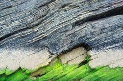 Abstrakt gräsplan- och grå färgbakgrund Arkivbild