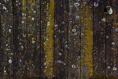 Abstrakt grå bakgrund av träplankorna bakgrundspläd Abstrakt minimalistic modell av romber Royaltyfri Fotografi