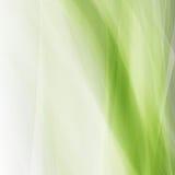 Abstrakt grön ecovågfyrkant Arkivbild