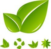 abstrakt grön leafset Arkivfoton