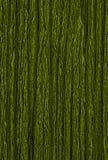 Abstrakt grön texturbakgrund Royaltyfri Fotografi