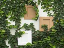 Abstrakt grön vägg med ramen på den vita bakgrunden Arkivfoton