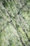 Abstrakt grönaktig yttersida av granit Arkivfoto