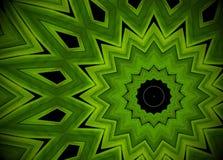 Abstrakt grönskabakgrund, palmblad med kalejdoskopeffe Arkivbilder