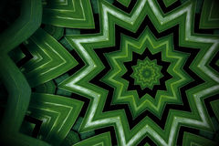Abstrakt grönskabakgrund, philodendronsidor med kalejdoskopeffekt Arkivfoton