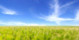 Abstrakt grönt fält och blå himmel Royaltyfri Foto