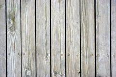 Abstrakt grungebakgrund - grå vertikal trätextur Fotografering för Bildbyråer