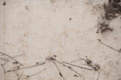 Abstrakt grungebakgrundstextur, royaltyfri bild