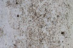 Abstrakt grungeljusbakgrund tät betong som skjutas upp väggen Royaltyfri Foto