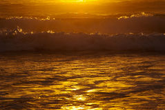 abstrakt guld- vatten Arkivbilder