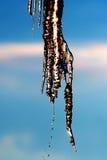 Abstrakt hängande smältande istapp med vattendroppar Royaltyfri Fotografi