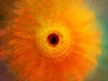 abstrakt härlig blomma Arkivbild