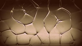 Abstrakt härlig linje bakgrund Färgrika linjer tapet Konstverkbakgrunder Mystisk belysning Royaltyfria Foton