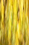 abstrakt höstfärger Arkivfoto