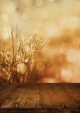 Abstrakt höstlandskap med den tomma trätabellen Arkivfoto
