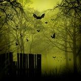 Abstrakt Halloween bakgrunder vektor illustrationer