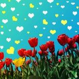 Abstrakt-Hintergrund mit Tulpen für den Gruß mit einem glücklichen Valent Lizenzfreie Stockfotografie