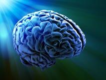 abstrakt hjärnhuman Arkivbilder
