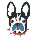 Abstrakt huvud för hund för papperssnittcollage Arkivbilder
