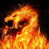 abstrakt illustration för brand för drake för bakgrundsblackdesign royaltyfri illustrationer