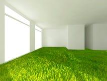 Gräs i rum Fotografering för Bildbyråer