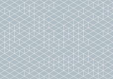 Abstrakt Isometry Wireframe teckning stock illustrationer