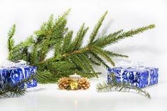 Abstrakt julsammansättning vinter för vektor för snowflakes för blommor för abstraktionbakgrundsblue Arkivfoto