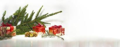 Abstrakt julsammansättning vinter för vektor för snowflakes för blommor för abstraktionbakgrundsblue Royaltyfri Bild