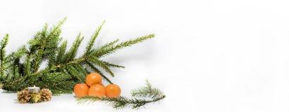 Abstrakt julsammansättning vinter för vektor för snowflakes för blommor för abstraktionbakgrundsblue Arkivbilder