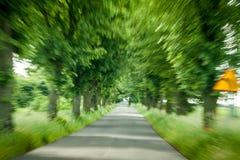 abstrakt körande skogväg Arkivfoto