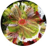 Abstrakt konst, abstrakt konst, abstrakt textur, mörker, blomma på vit bakgrund, cirkel på vit bakgrund Royaltyfria Foton