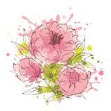 Abstrakt kwitnie ilustrację -- peonie Obrazy Royalty Free