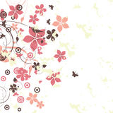 Abstrakt kwitnie tło Obrazy Stock