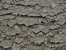 Abstrakt landbakgrund Royaltyfria Foton
