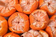 Abstrakt ljus designbakgrund av halva-borstade ljusa orange tangerin Royaltyfria Foton
