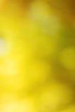 Abstrakt ljus gul bokeh Royaltyfria Bilder