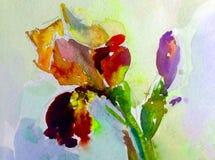 Abstrakt ljus kulör dekorativ bakgrund Handgjord blom- modell Härlig mjuk romantisk irisblomma Arkivfoton