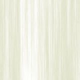Abstrakt ljus Palegreen bakgrund för limefruktfibertextur, stor detaljerad makroCloseup royaltyfria foton
