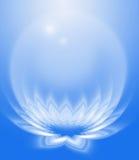 abstrakt lotusblomma Royaltyfri Fotografi