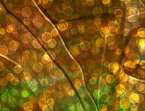 Abstrakt mångfärgad bakgrund med bokeh för design Royaltyfri Fotografi