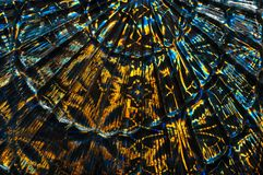 Abstrakt mångfärgad glass bakgrund En modell i form av en fan Fotografering för Bildbyråer