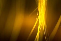Abstrakt makro av päls i gula signaler Arkivfoton