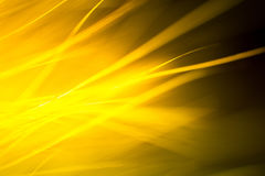 Abstrakt makro av päls i gula signaler Royaltyfri Foto