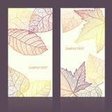 Abstrakt mallkort med höstsidor och din text för bakgrund layered Arkivbild