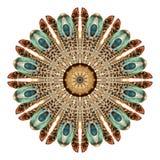 Abstrakt mandala för vattenfärg Rund modell av fjädrar på vit bakgrund royaltyfria foton