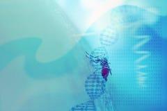 Abstrakt medicinsk bakgrund med DNAspiralen, genetisk kod och mos Fotografering för Bildbyråer